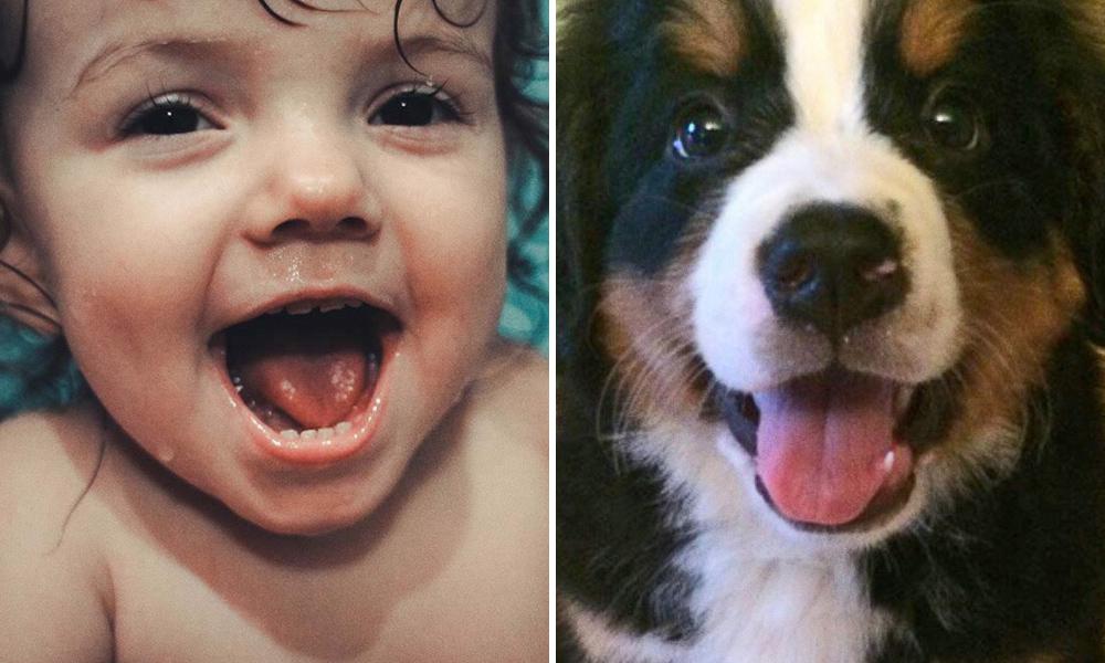 Aj zvieratá vedia cítiť a preukázať emócie ako deti. Neveríš?