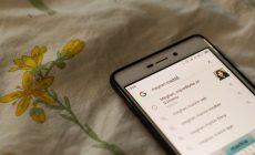 Čo si ľudia hľadali cez Google v roku 2018 najviac? Ani vás to veľmi neprekvapí