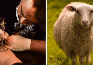 Sú tetovania vegánske? Dnes sú živočíšne produkty takmer všade