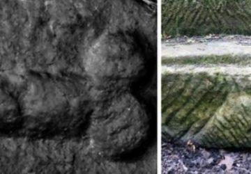 Hadriánov val skrýval celé stáročia kuriozitu, kamenné penisy. Tie sú vraj na rímskych stavbách pomerne častým javom